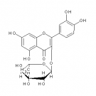 ST101401 Quercitrin (Quercetin-3-O-rhamnoside)
